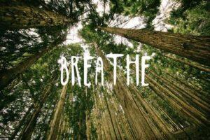 breathe_u-L-PXJIQF0